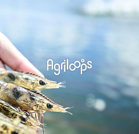 Investir dans Agriloops
