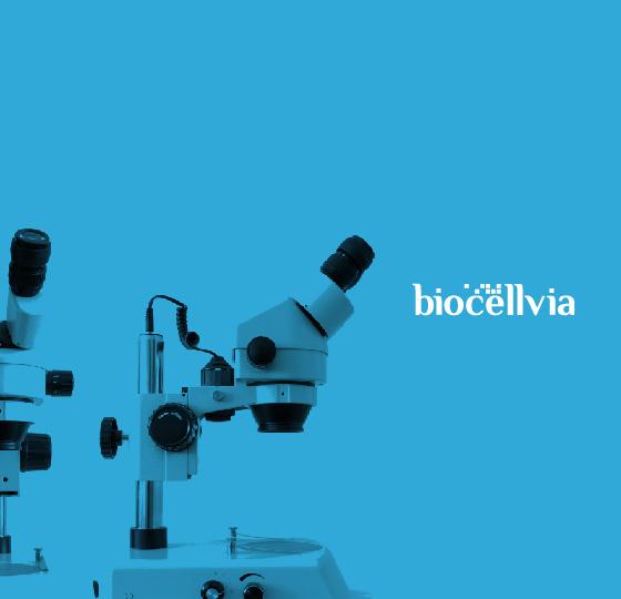 Investir dans Biocellvia