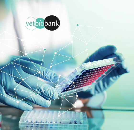 Investir dans Vetbiobank