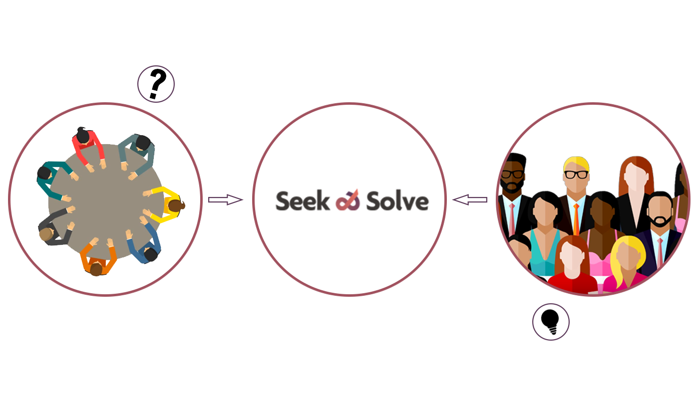concept Seek and Solve
